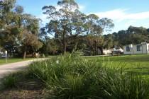 p6275103-garden.jpg